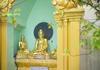 Serenity in Shwedagon, Burma