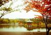 Fall, Seoul